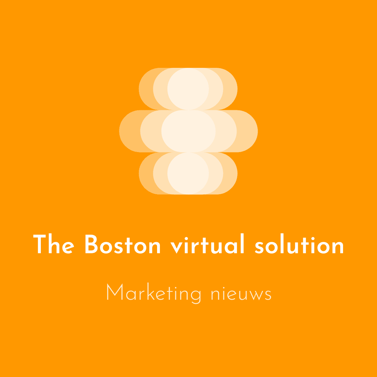 Thebostonvirtualsolution